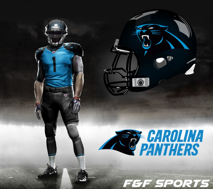 panthers concept 2 v4