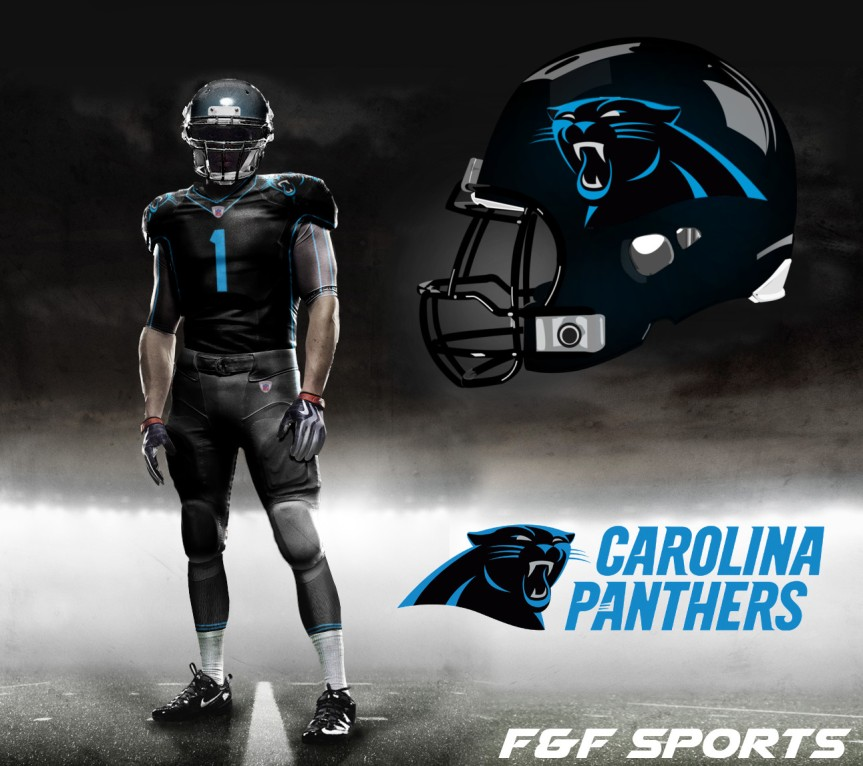 panthers concept 2